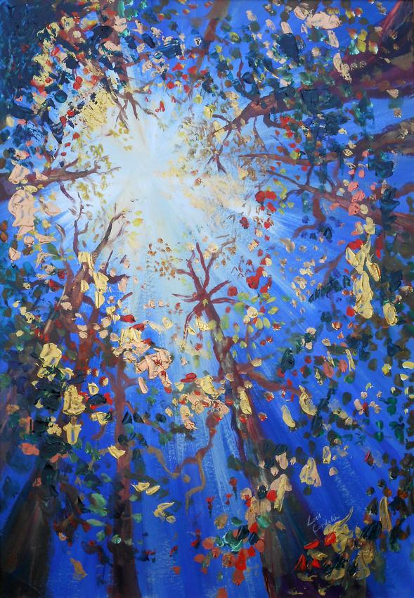Sunburst through the Tree Canopy